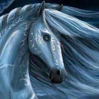 zingi Год Лошади Year of the Horse