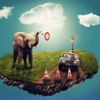 zingi gallery галерея pictures фантастика, необычное, слон, жираф