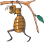 zingi gallery галерея pictogram муравей,труд,работать