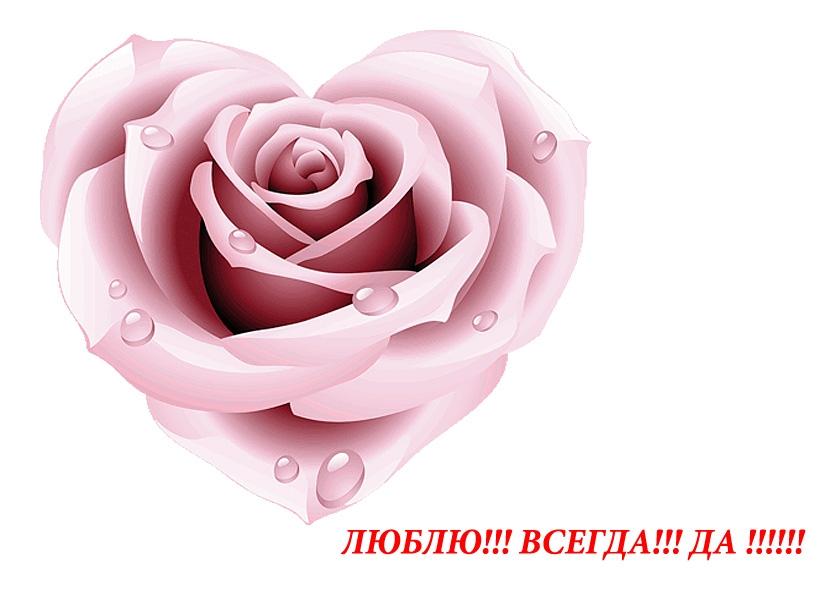 Image to the word валентинка,  Pictures gallery of Zinkod, Валентинка,любовь,романтика,открытка,, Для милой и единственной скажу одни слова,  люблю тебя любимая на веки навсегда  И солнце светит яркое как в сердце у меня, живёт любовь прекрасная  лишь только для тебя