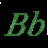 zingi b b