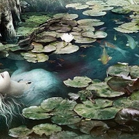zingi болото swamp