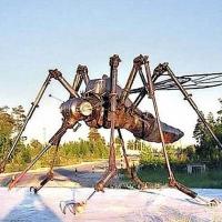 zingi gallery галерея pictures комар,насекомое,mosquito,