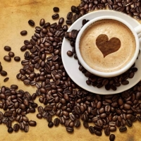 zingi gallery галерея pictures coffee, кофе, напиток, эспрессо