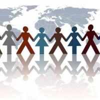 zingi интеграция integration